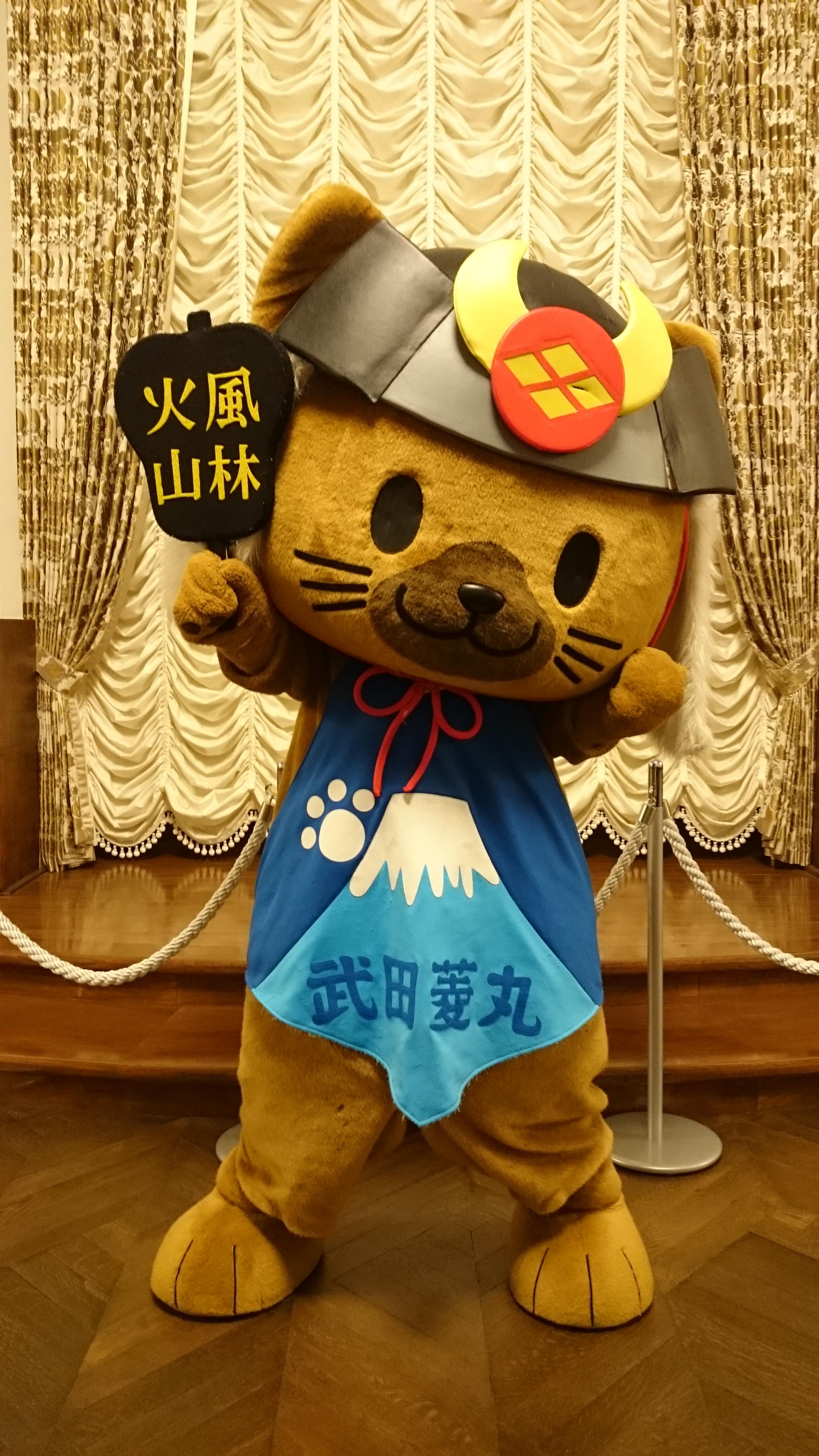 http://www.yamanashi-kankou.jp/blog/%E6%AD%A6%E7%94%B0%E8%8F%B1%E4%B8%B8.JPG