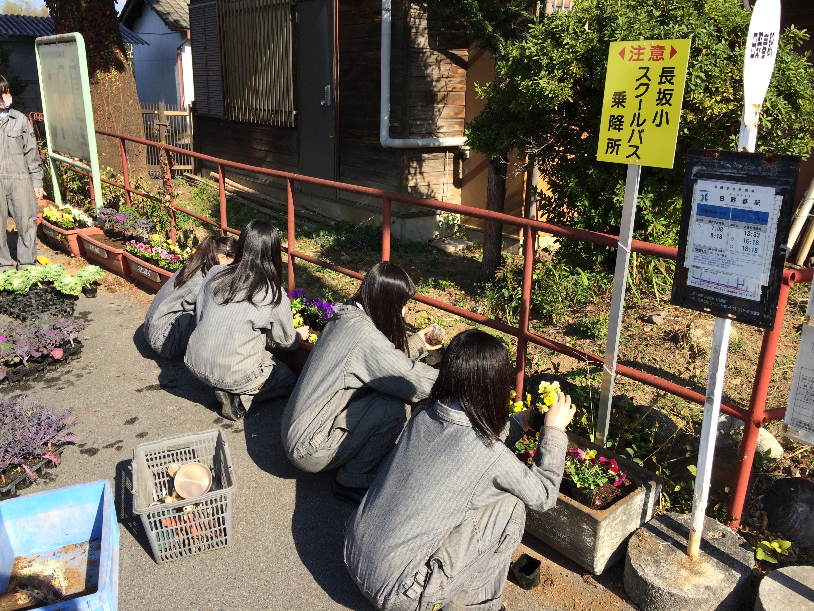 http://www.yamanashi-kankou.jp/blog/%E9%A3%BE%E8%8A%B1%E6%B4%BB%E5%8B%95%EF%BC%91.JPG