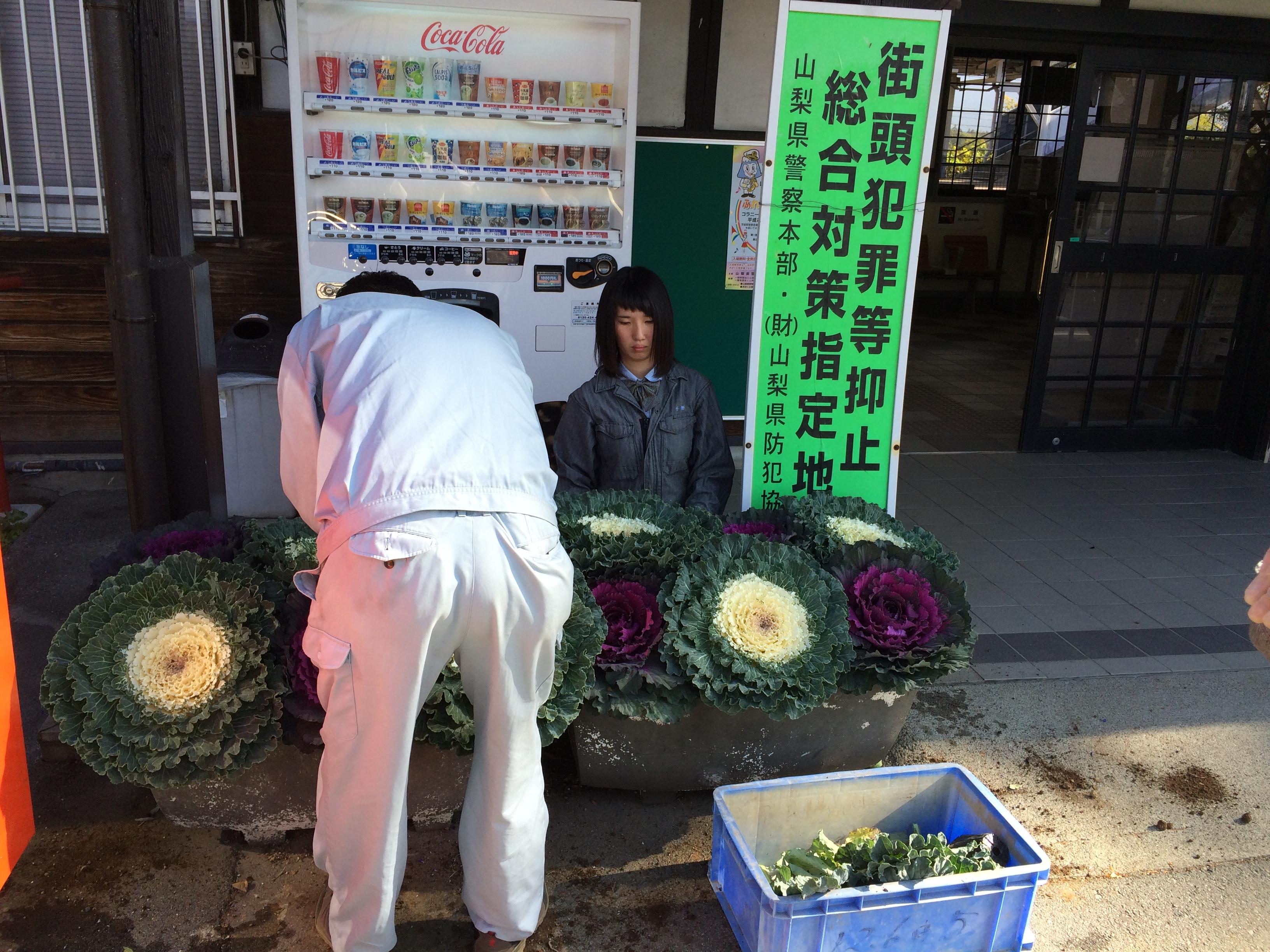 http://www.yamanashi-kankou.jp/blog/%E9%A3%BE%E8%8A%B1%E6%B4%BB%E5%8B%95%EF%BC%92.JPG