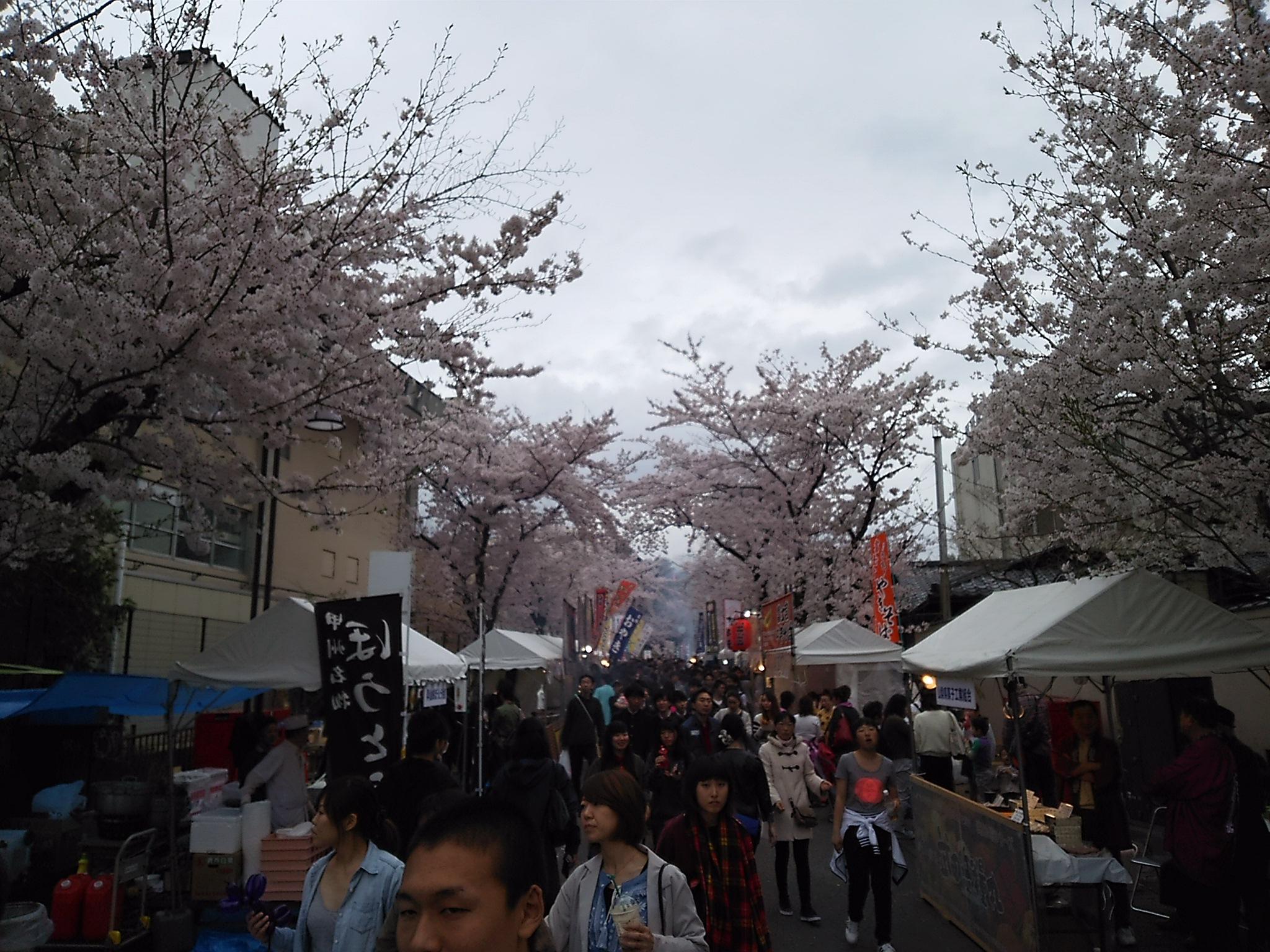 http://www.yamanashi-kankou.jp/blog/DSC_0025.JPG