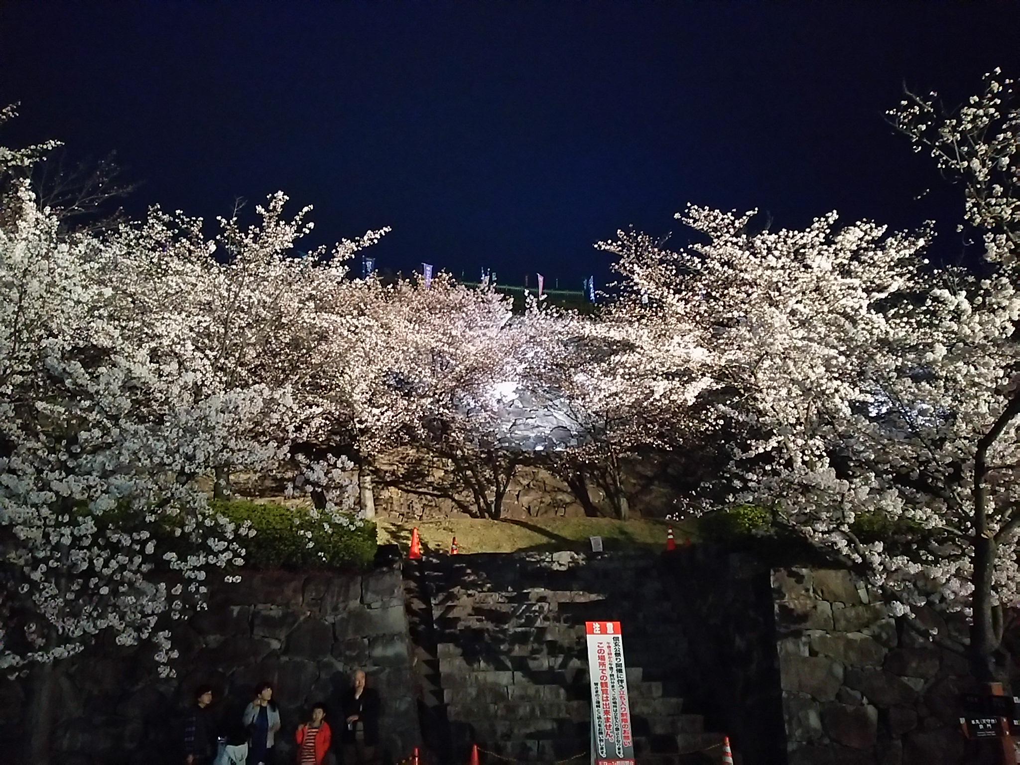 http://www.yamanashi-kankou.jp/blog/DSC_0040.JPG