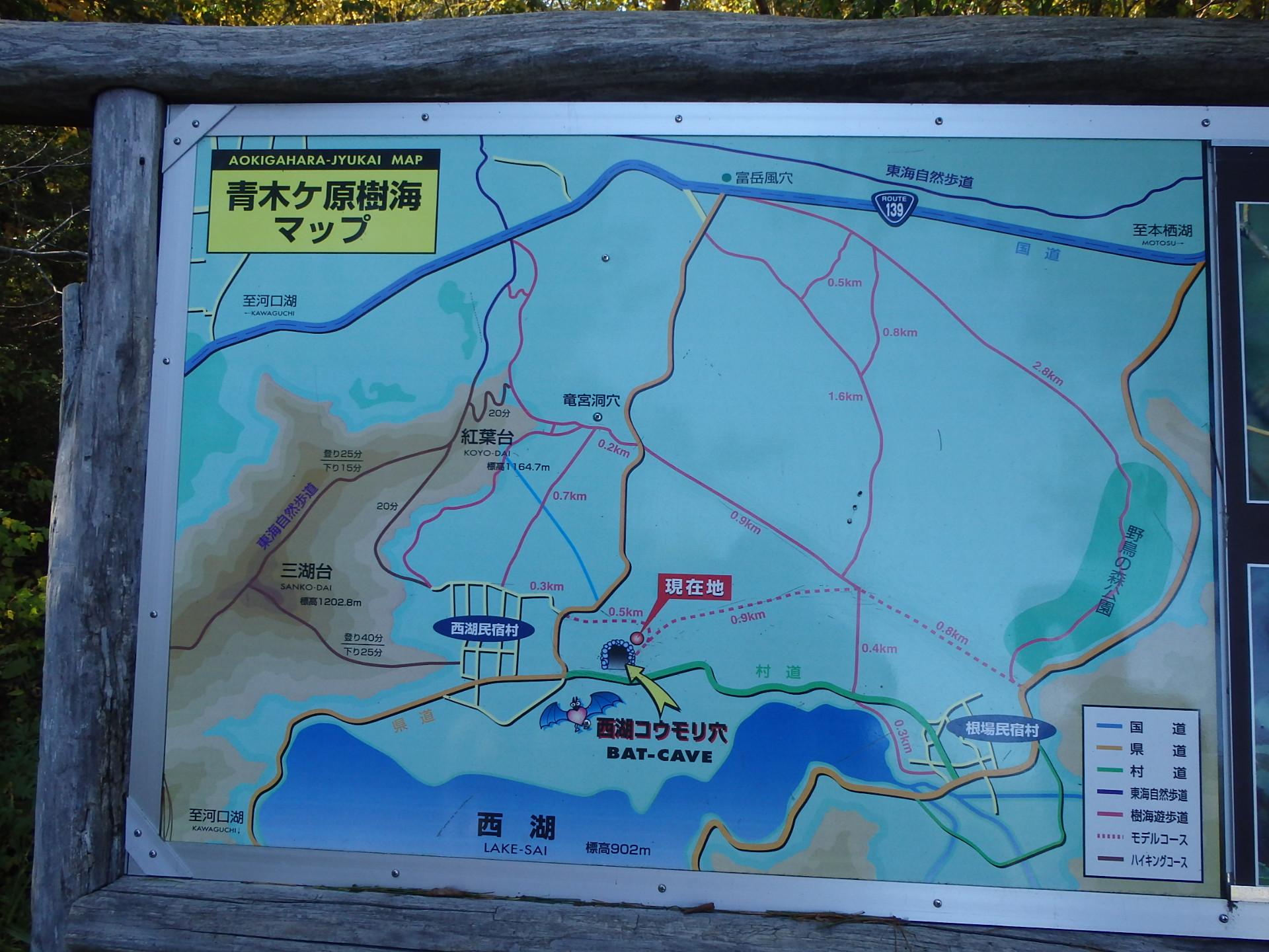 http://www.yamanashi-kankou.jp/blog/L43T9j_14.jpg