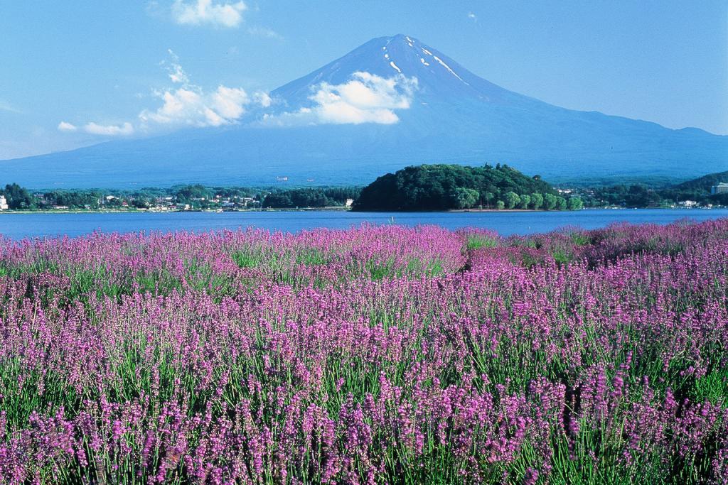 http://www.yamanashi-kankou.jp/blog/pg_30014_2.jpg