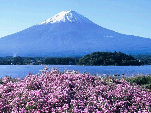 http://www.yamanashi-kankou.jp/english/images/img02_01.jpg