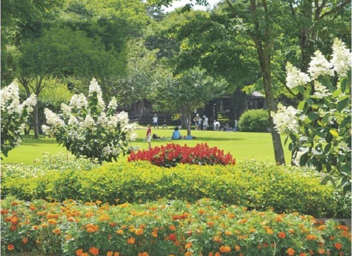 庭園 恩賜 林