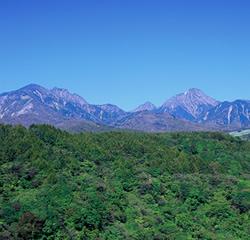 八ヶ岳秩父山系富士の国やまなし観光ネット 山梨県公式観光情報