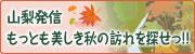美しきたのしい秋に会うための旅。山梨発信もっとも美しき秋の訪れを探せっ!!