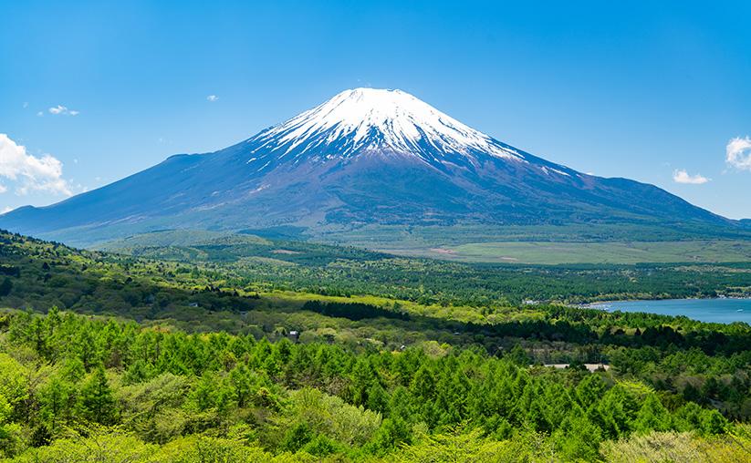 富士山・自然/富士の国やまなし観光ネット 山梨県公式観光情報