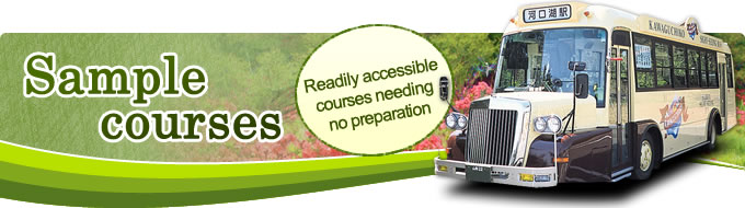Sample courses Readily accessible courses needing no preparation